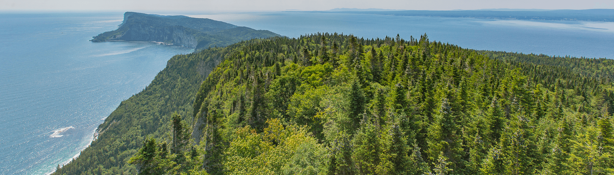 The view from Cap-Bon-Ami lookout tower