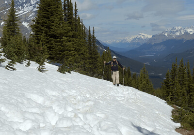 Peyto Lake trail covered in snow