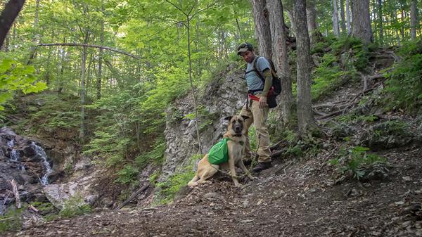Dean Campbell en randonnée avec son chien dans le parc de la Gatineau